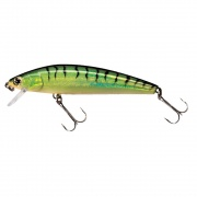 Tormentor Floating Bibbed Lure