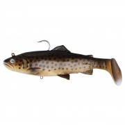Trout Rattle Shad 3D