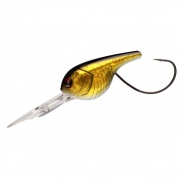 Crank DS Floating Lure